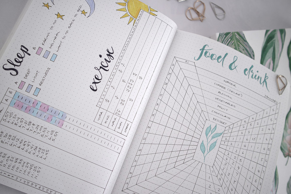 Paper-Roses | Notebooks | Monthly tracker