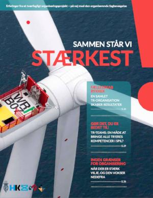 """""""Sammen står vi stærkest – DKs største organiseringsprojekt i Siemens Wind Power"""", Ambios for LO / FiUs udviklingsenhed   Hent her"""