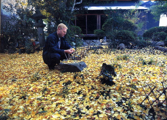 Alex admires the fallen ginkgo leaves in the garden of his residency, Yada Tenmangu