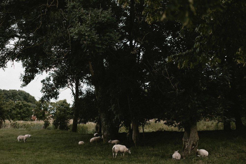 Trouwen op een boerderij 001.jpg