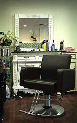 Hair Stylist Booth Chair