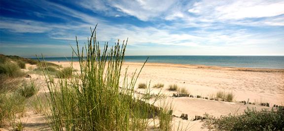 Beach Albufera, El Saler