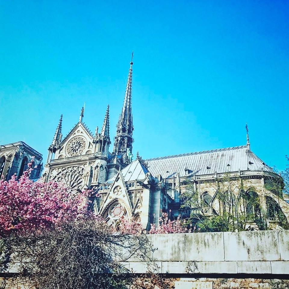 Notre Dame in the springtime