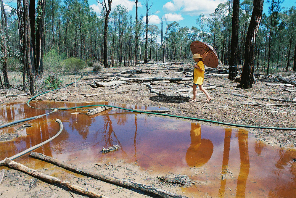 2014 - The Pilliga Forests are under threat from more propsed CSG mines.  Protecting the Pilliga FB .