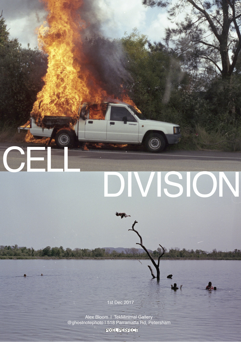 a3-flyer-cellDivision-3 copy.jpg