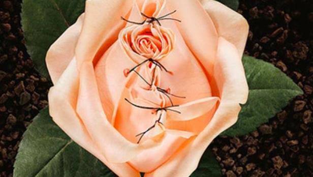 FGM Flower.jpg