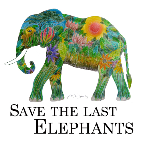 Save the last elephants