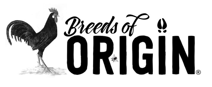 Breeds of Origin Conservancy