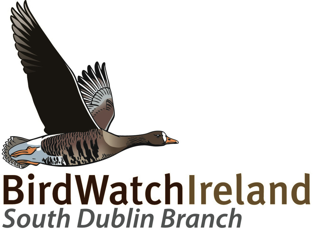 BirdWatch Ireland - South Dublin Branch