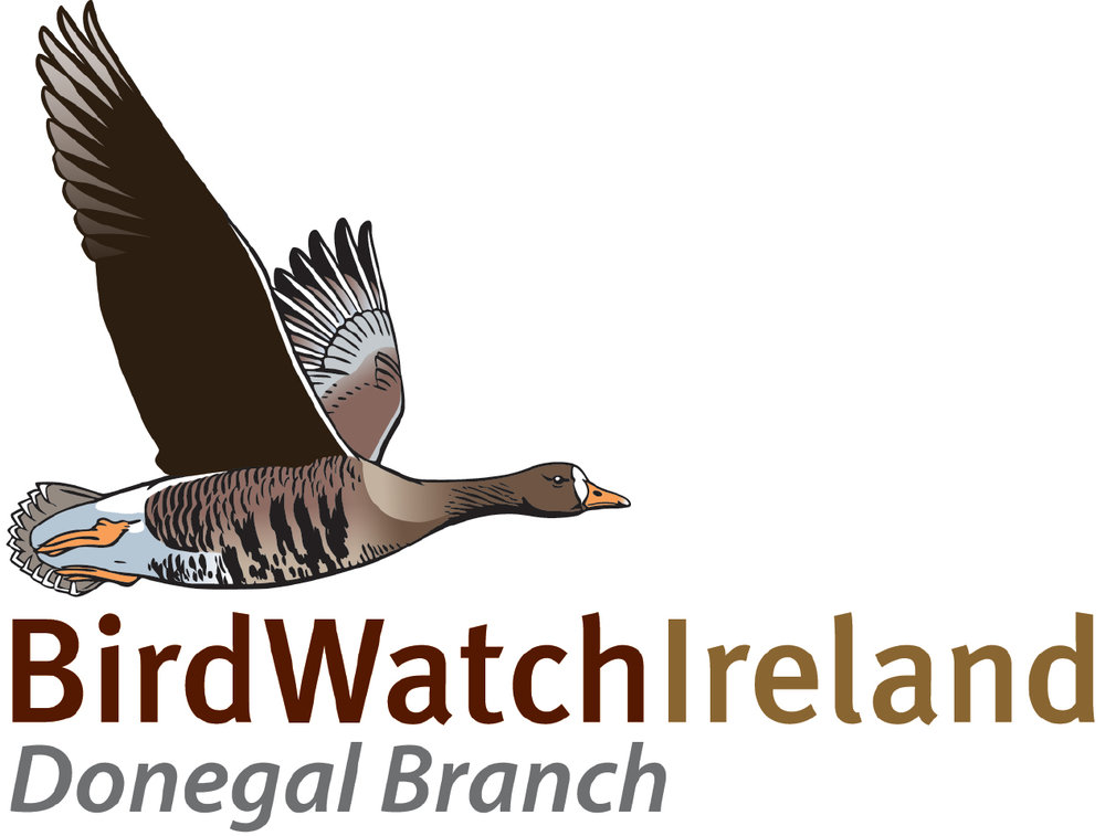 BirdWatch Ireland Donegal Branch