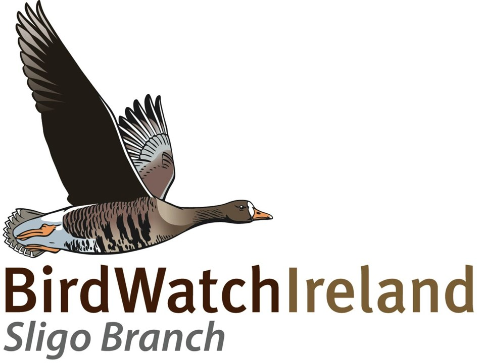 BirdWatch Ireland Sligo Branch
