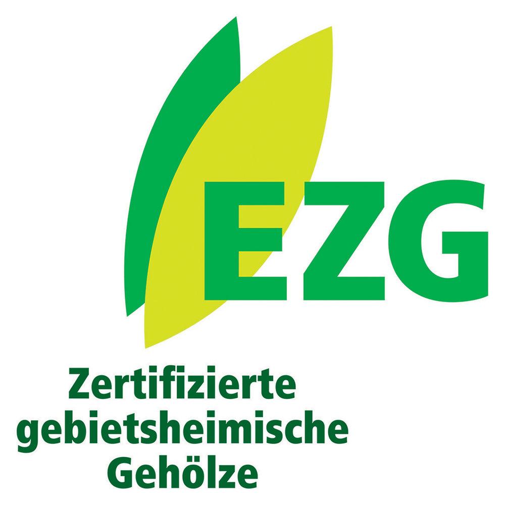 EzG Baden-Württemberg