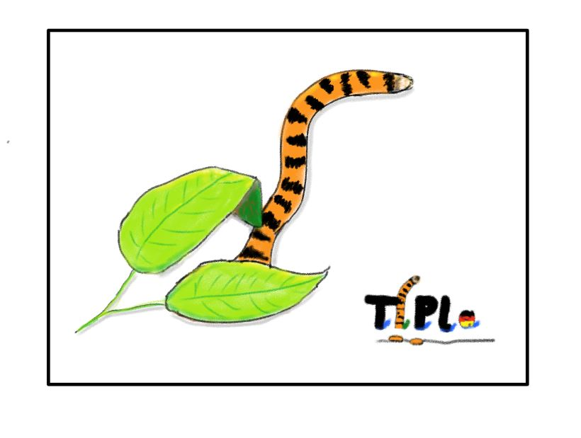 TiPla (Tiger Planet)