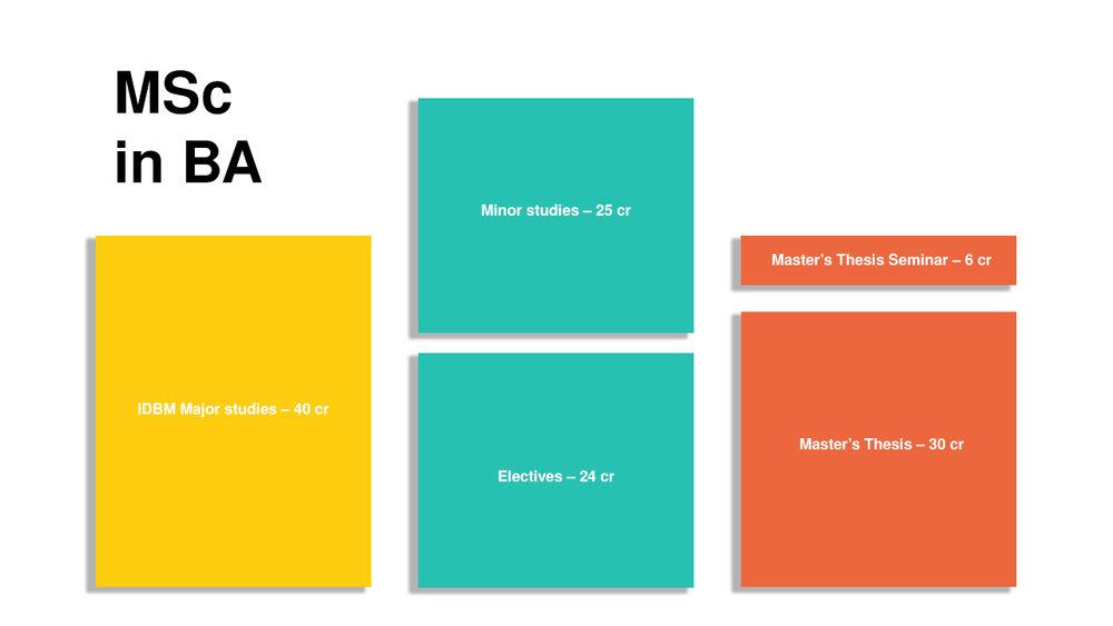 MSc-in-BA-IDBM-Masters-Aalto-University-Degree-Structure.jpg