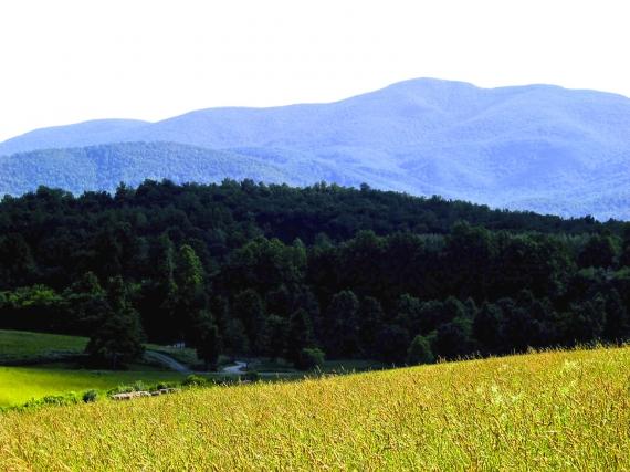 farm_vista_color_enh__large.jpg