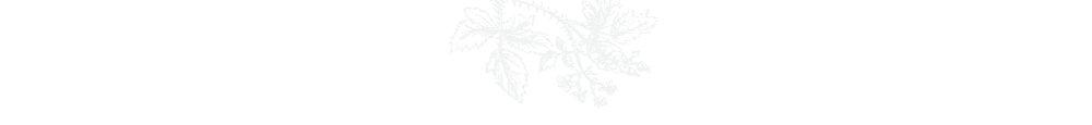 flor top.jpg