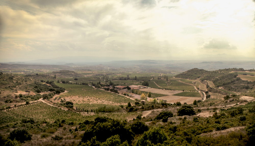 jeremyfenske_photography_video_spain_rioja-.jpg