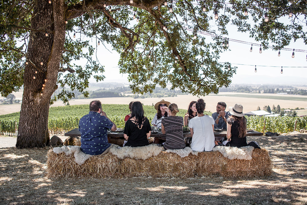 20170826_AnticaTerra_Vineyard_jeremyfenske_low-5400.jpg