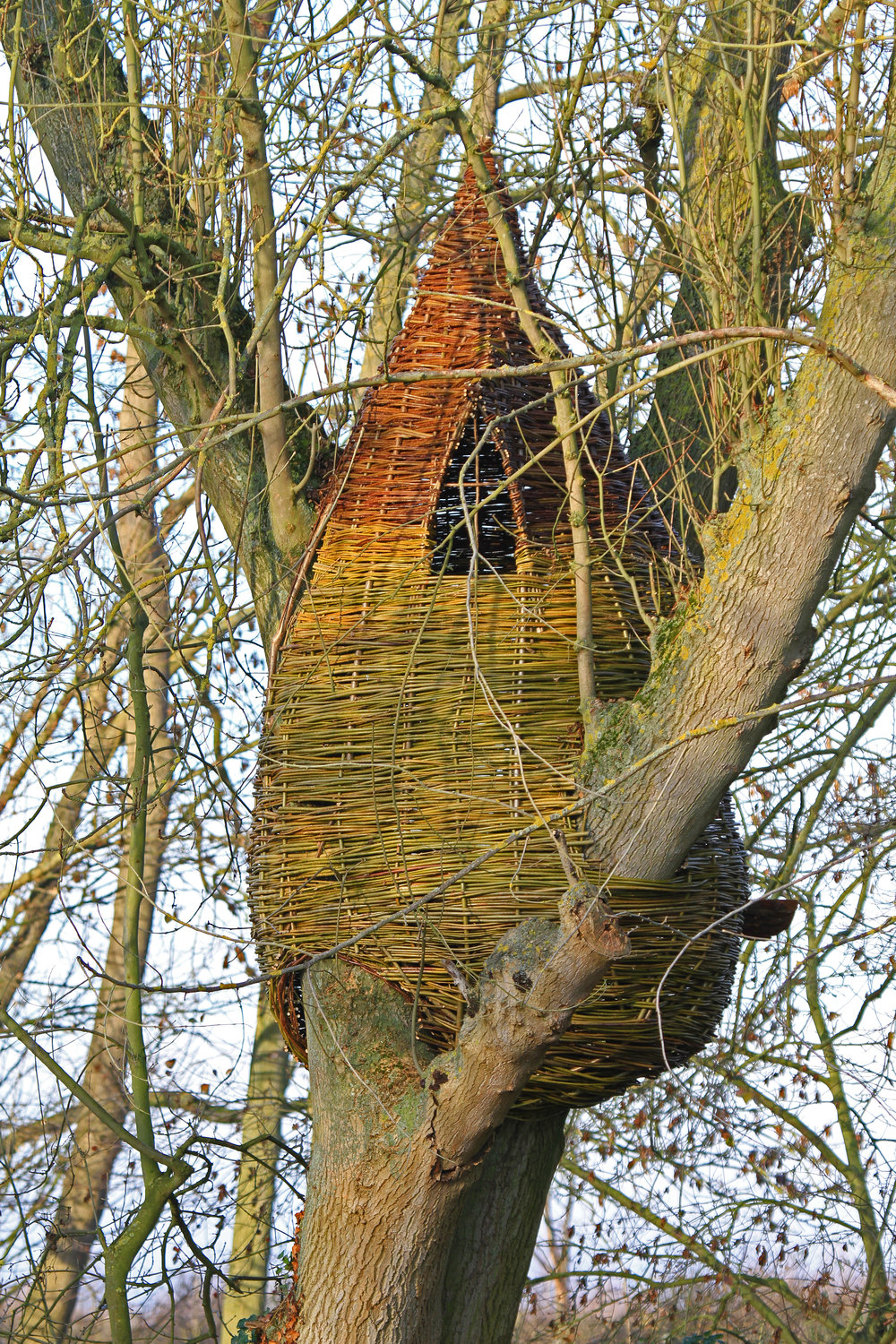 Bespoke tree houses and dens by WonderWood