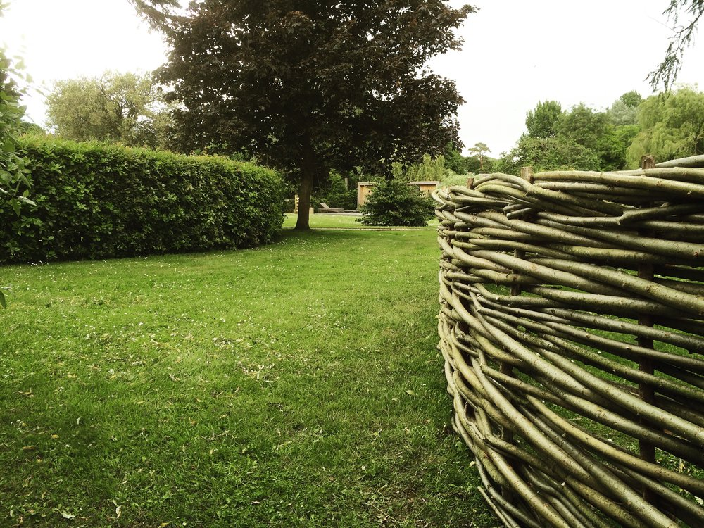 Willowy edges