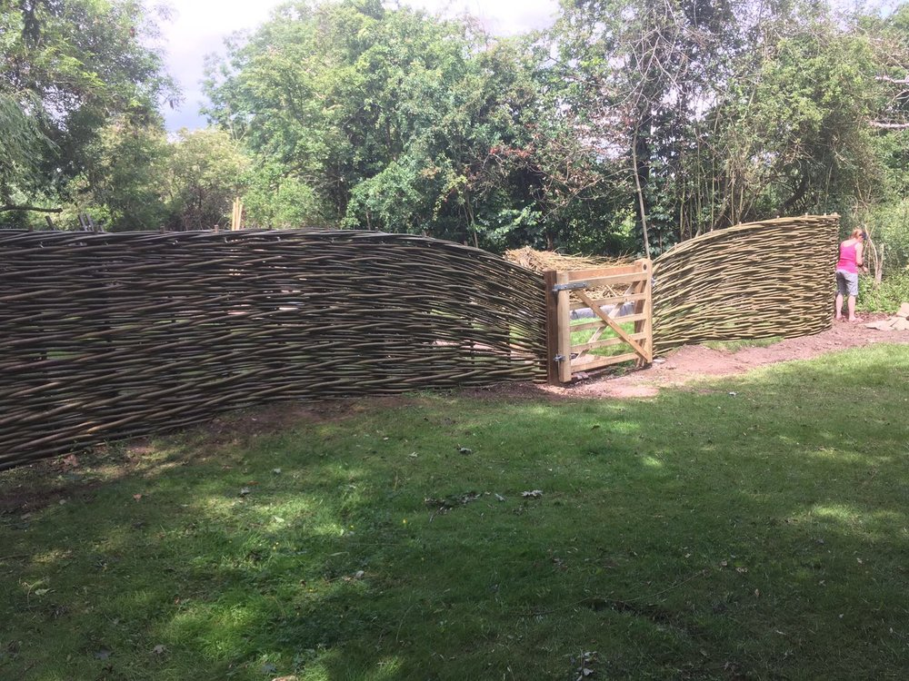 Wicker fencing