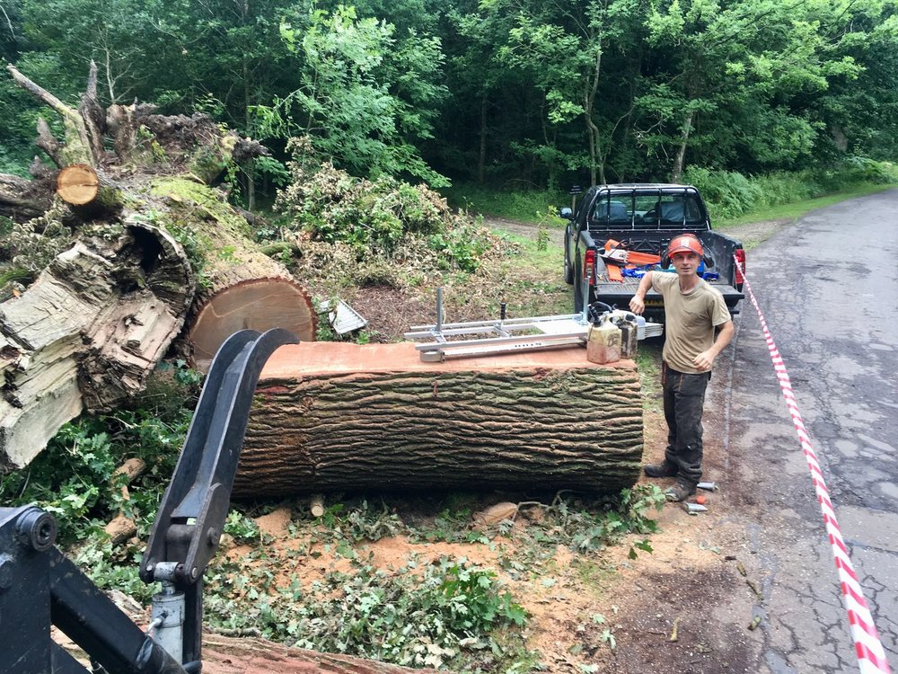 Mobile saw milling for planked timber