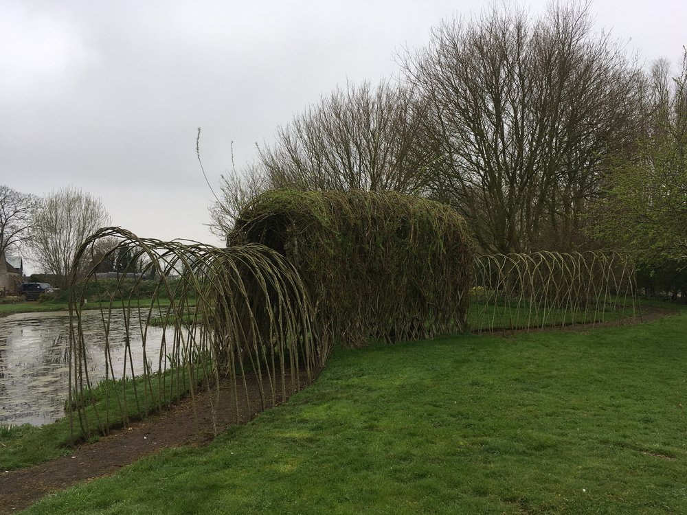 "Are your fences living? - They can be if it is requested. However, standard practice is that all of our willow is freshly cut for each job but not put in the ground, so there is no chance of the rods sprouting and growing. To make sure our fences aren't ""living"", we use seasoned willow uprights (not fresh, as this would sprout) or hazel or chestnut uprights.Living fences and structures are beautiful and we enjoy making them, however, it is important to understand that they are living and they will continue to grow. If not maintained, re-woven and pruned each year the structures will soon get out of control."