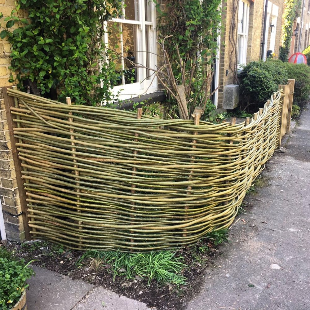 What is the difference between hurdles and your fencing? - Hurdles bought off the shelf will only last for 2-3 years maximum, whereas traditionally woven hurdles will have a longer life span, usually 6-7 years and are made using age-old methods and techniques. We offer continuously woven fencing; a bespoke, stronger and more durable option, with a life-span of at least 10 years. Our fences are woven continuously from where they begin to where you would like the fence to end. Using this technique, we can go with the ground level, weave around trees and flower beds, we can go up and over walls and the fence will have a beautiful sense of something that flows. It also means that you can have more say in the design of the overall fence, for instance, sloping the height of the fence from high to low, which maximises privacy where you need it but reduces the height where you may want to make the most of a beautiful view; we can weave it to your exact specifications. There are no joins in the weave, so no weak points for wind and wildlife to damage it. The way in which the fence is woven means that each willow, or hazel, rod is overlapped and intertwined together making for a solid structure. We also use steel uprights at intervals, which supports the fence.