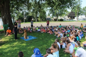 Katie's Finnish Spitz Jari does tricks for a huge group of school kids at an education event. Jari and Katie's Finnish Spitz Bubbles, also visit schools.