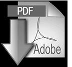 Download the pdf version