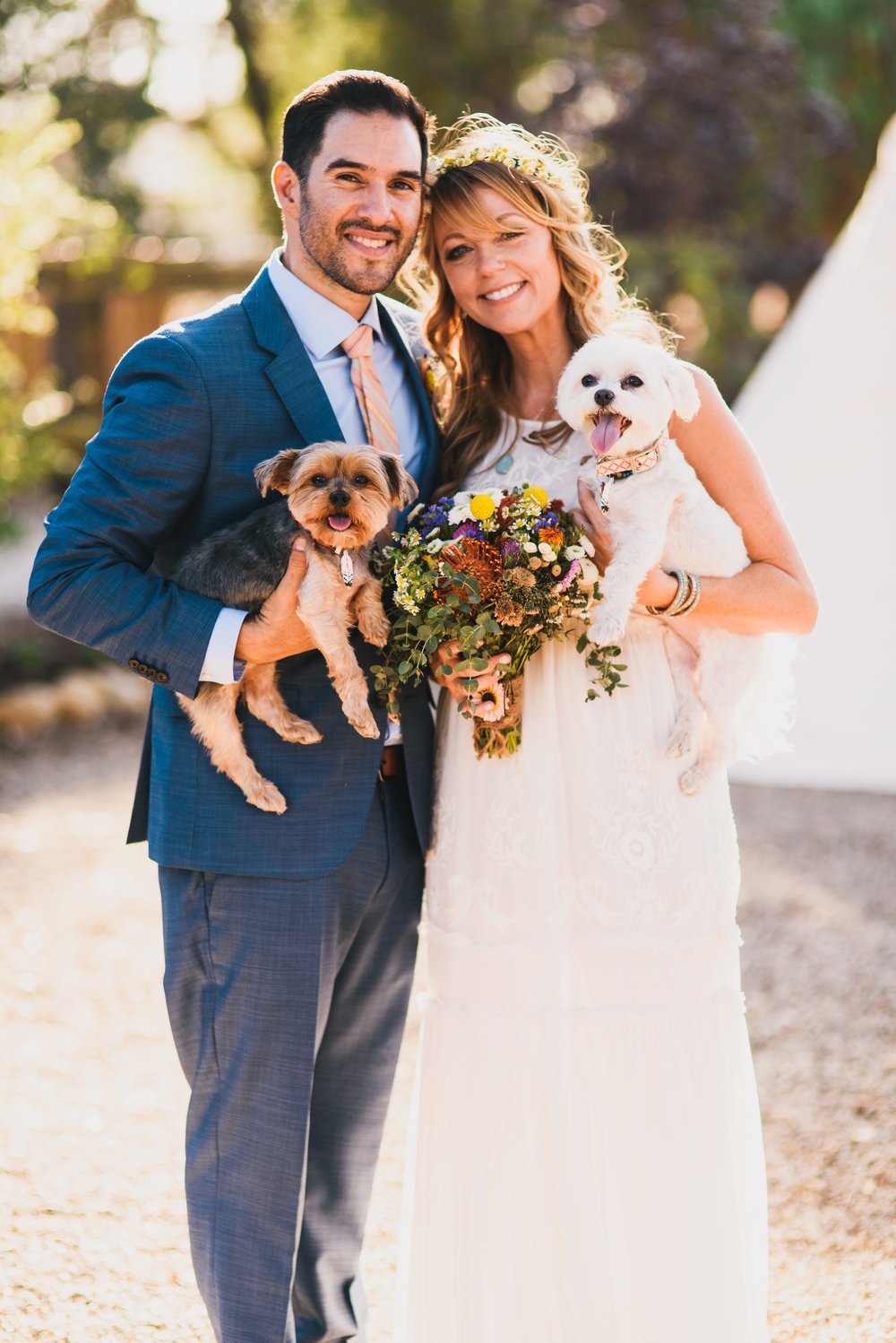 Weddings -pups.jpg