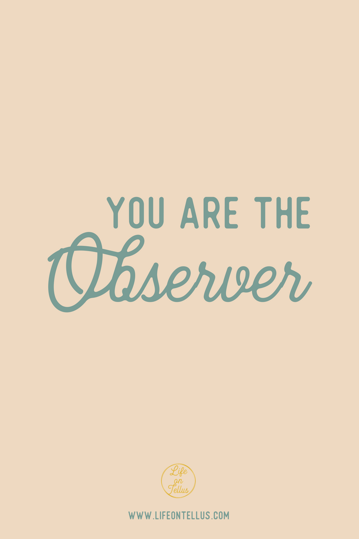 you are the observer