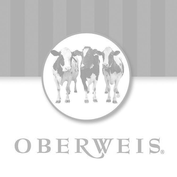 oberweis_website.jpg