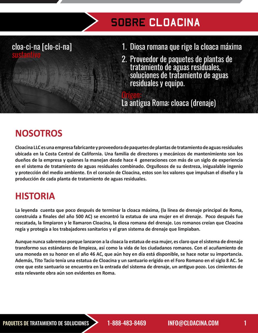 MEMPAC-I-Spanish copy-2.jpg