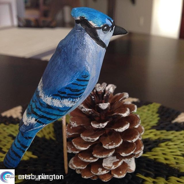 @Regranned from @artsburlington Arts Burlington -  @Regranned from @meru_parmar Meru Parmar -  #bluejays #woodcarving #sculptorsandwoodcarvers #Christmas ornament carved and painted at AGB with the woodcarvers guild #knife #ornaments  @sculptorsandwoodcarvers