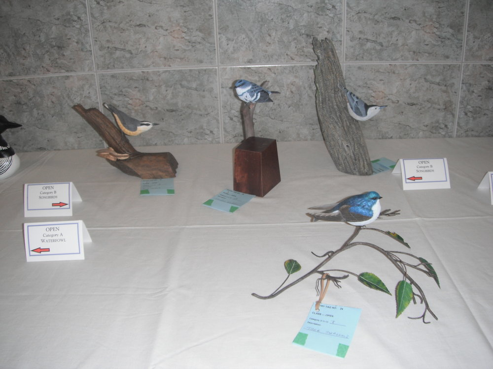 Niagara Wood Show 2011 003.JPG