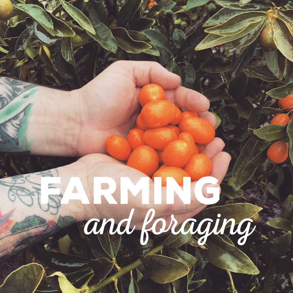 Farming and Foraging