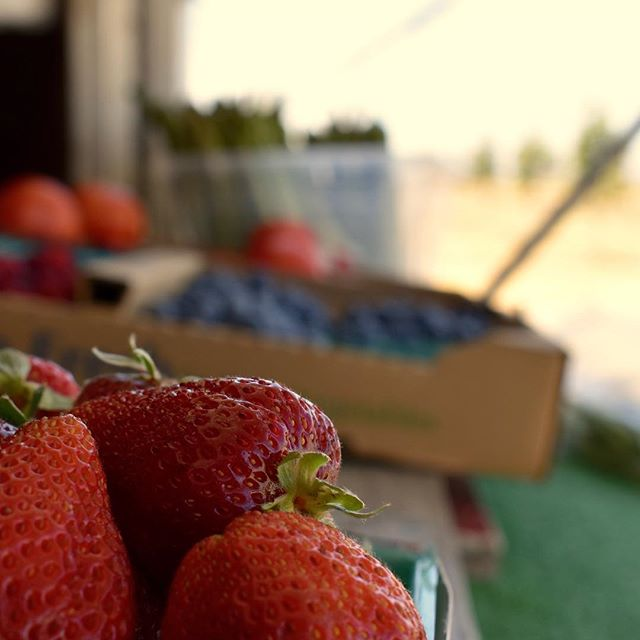 Our strawberries come from a farm 7.2 miles away, which is pretty far away by our standards! But they're worth it!!