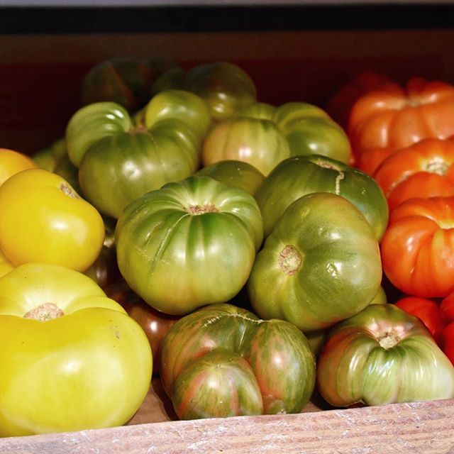 and the first heirlooms from Terra Firma!