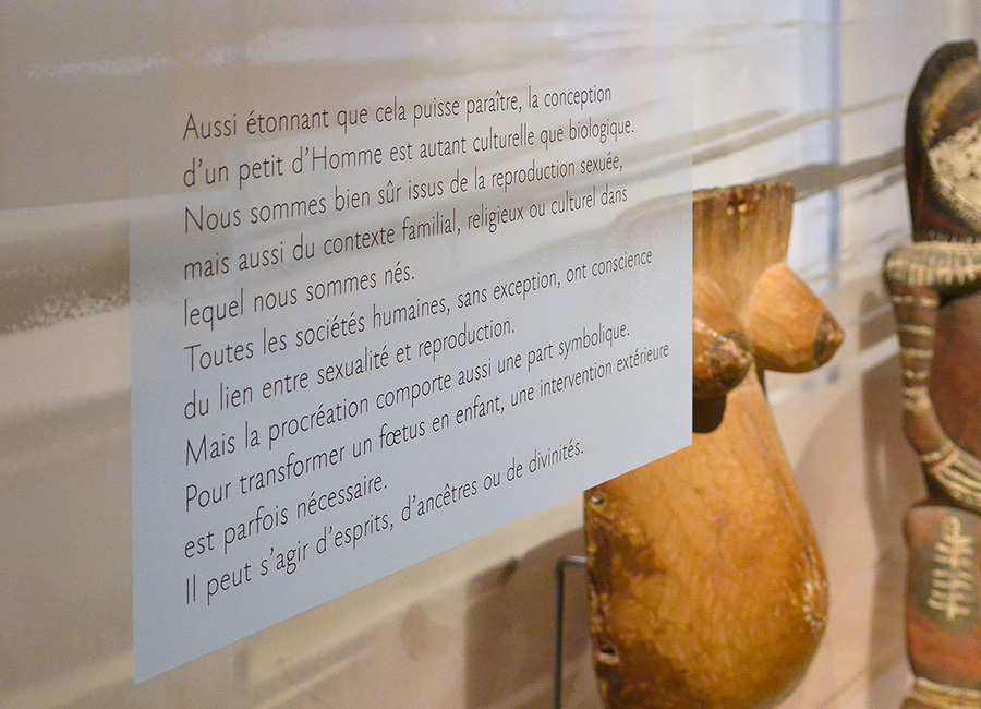111_musee-de-l-homme-exposition-polygraphik-14.jpg
