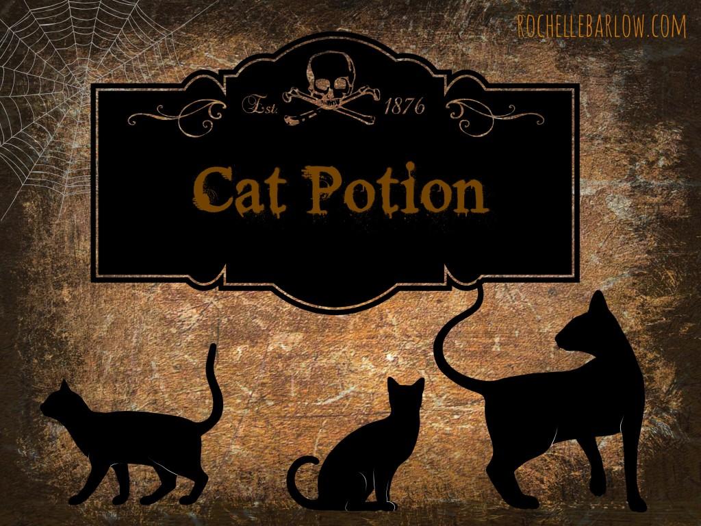 cat potion