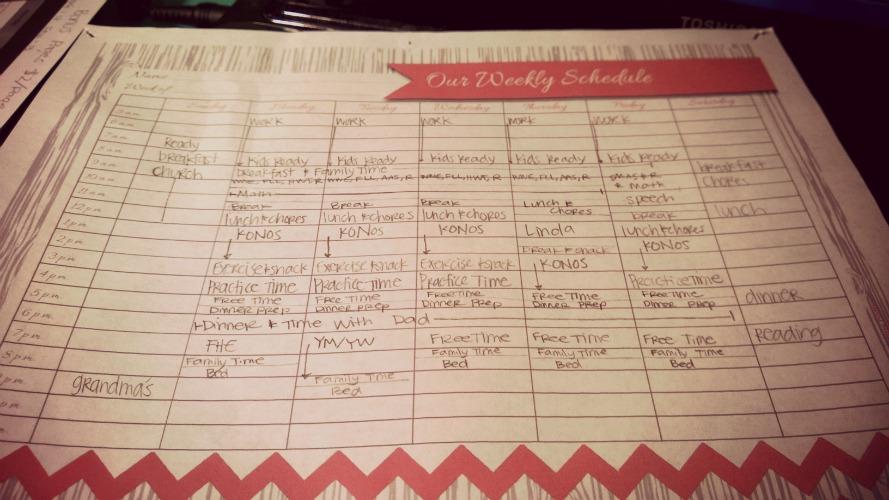 schedule 1