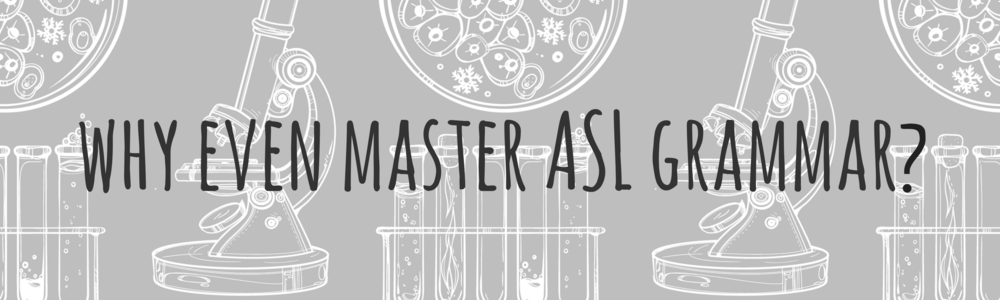 Why even master asl grammar?