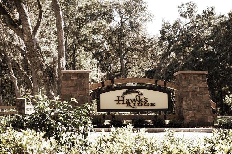 Hawk's-Ridge-Subdivision_LG.jpg