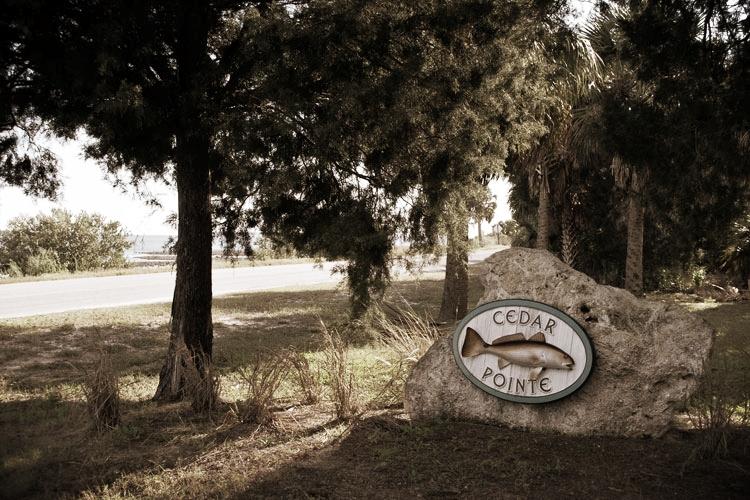 Cedar-Point-Subdivision_LG.jpg