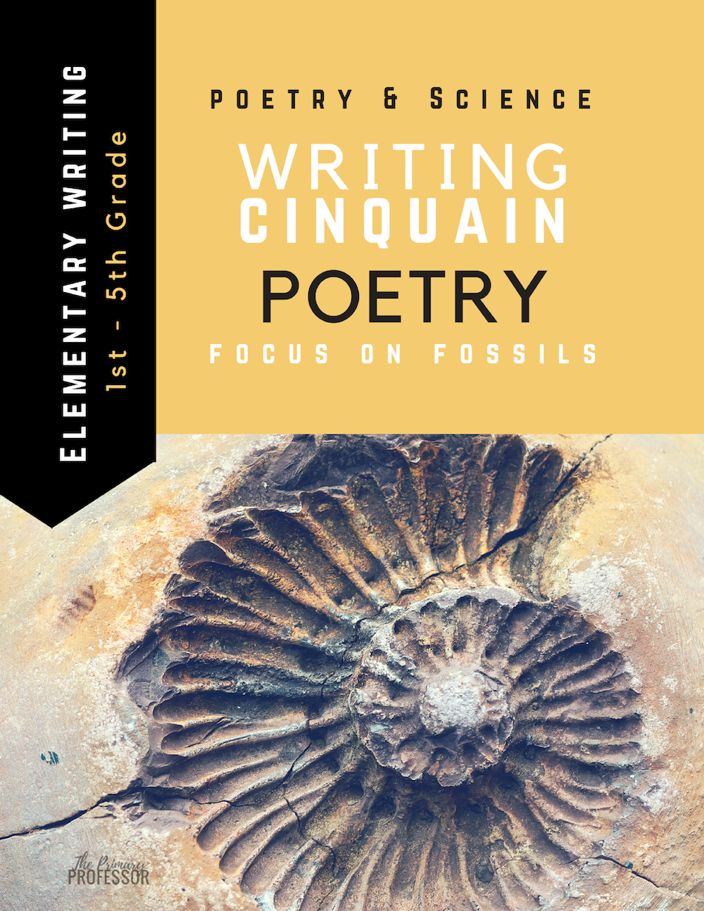 Writing Cinquain Poetry: Focus on Fossils