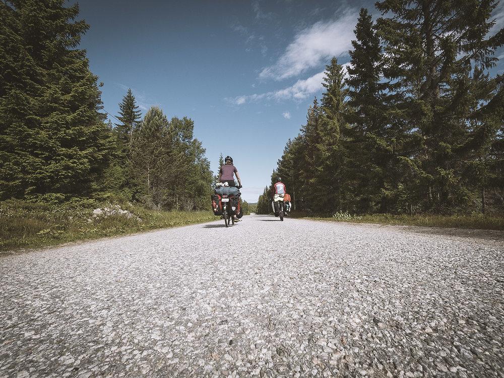 Wir geniessen die schöne Natur auf den Nebenstrassen Schwedens