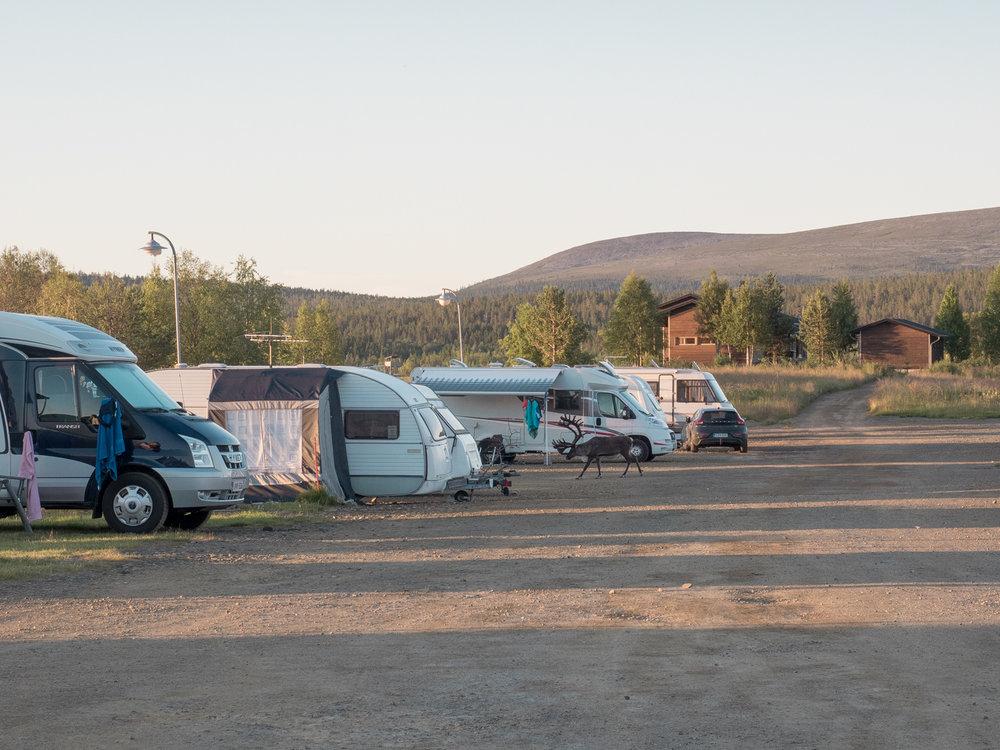 Kurze Runde durch den Campingplatz