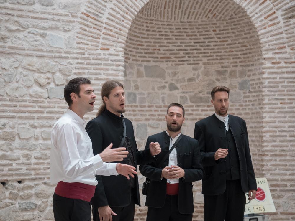 Dalmatianische Sänger