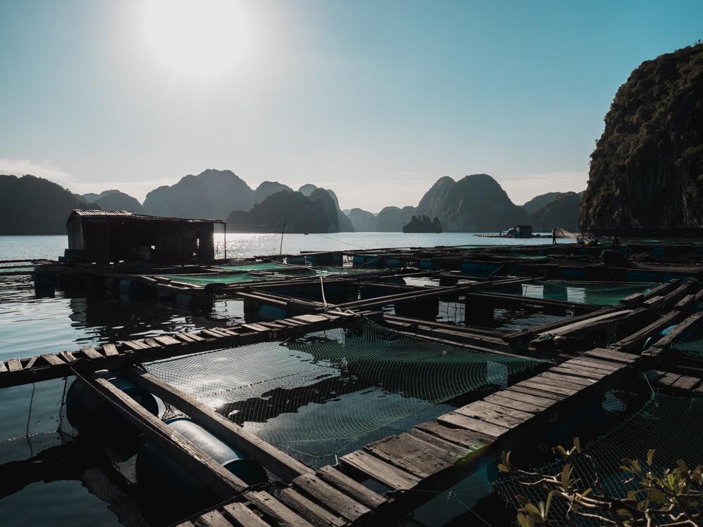 Schöne Kulisse bei der Arbeit im floating fishing village